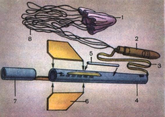 Устройство модели ракеты: 1