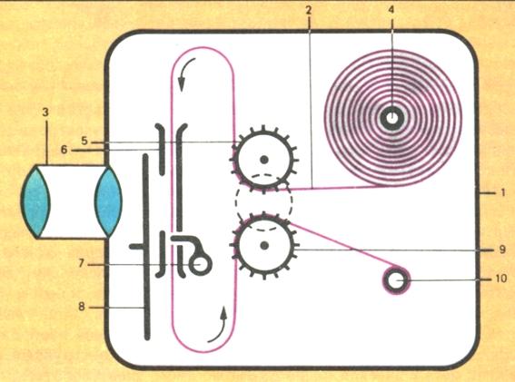 Схема устройства кинокамеры.